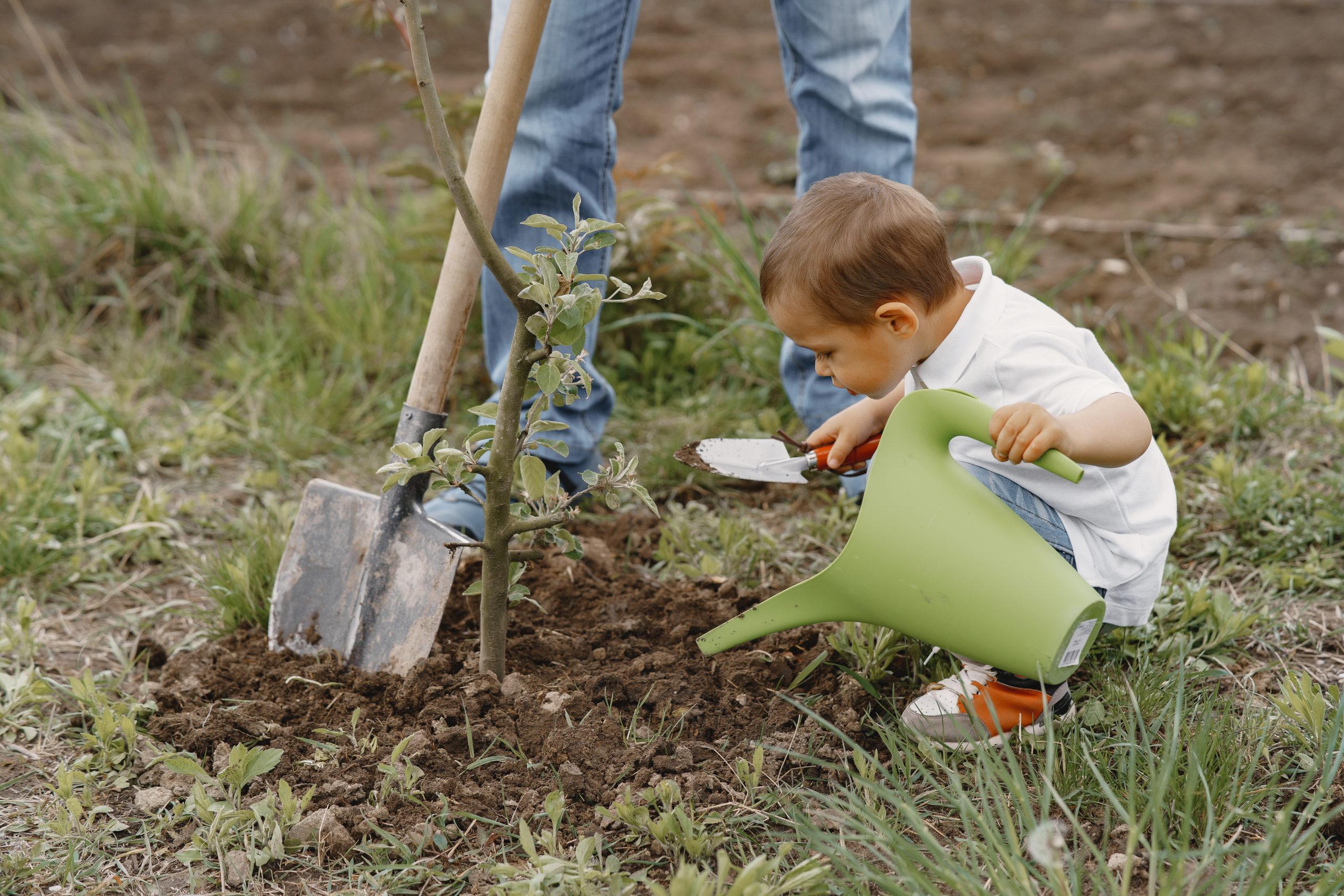 Niño plantando árbol; sustentabilidad